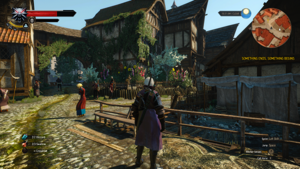 Witcher 3 - In Velen after story completion